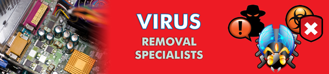 Virus Removal Specialists